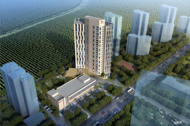 不负春光起好步,希尔顿逸林酒店公寓项目银行主体封顶大吉